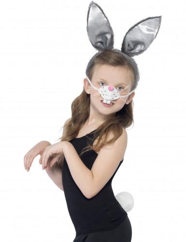 kit de coelho para criança