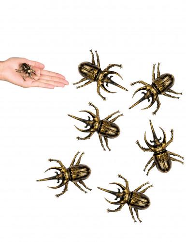 6 Decorações escaravelhos dourados Halloween