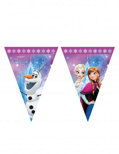 Grinalda de plástico Frozen™