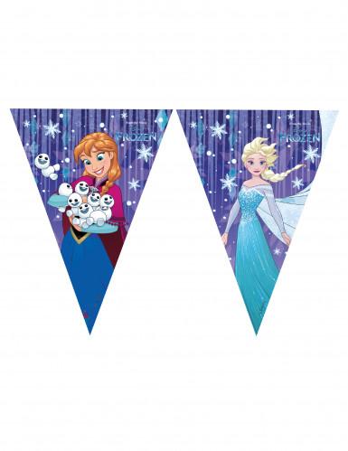 Grinalda de bandeirolas Frozen™
