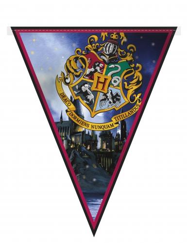 Kit de decorações Harry Potter™ 7 peças-2