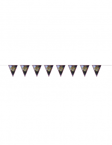 Kit de decorações Harry Potter™ 7 peças-3