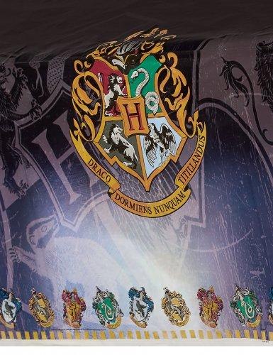 Toalha de plástico Harry Potter™-1