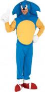 Disfarce do Sonic™ adulto