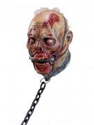 Máscara zombie escravo adulto